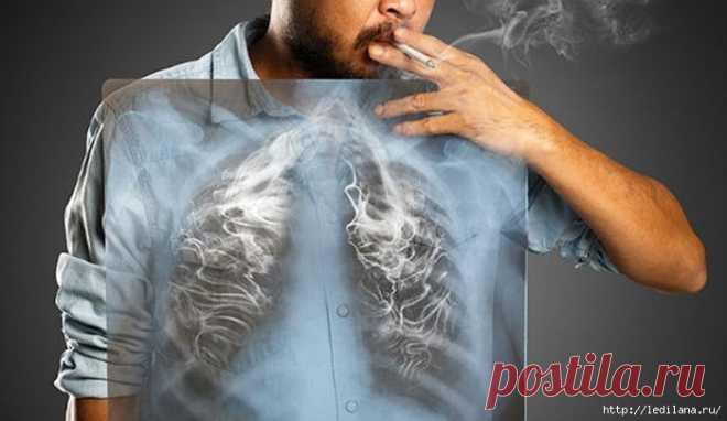 Полезные напитки для восстановления лёгких