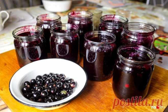 Простые рецепты домашних настоек, наливок и вина с фото - новости Екатеринбурга E1.ru
