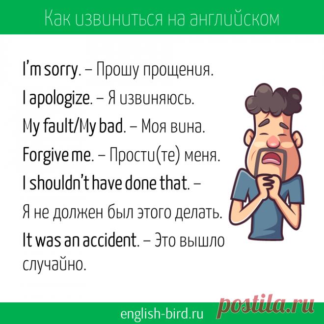 Как извиниться на английском: фразы на все случаи жизни