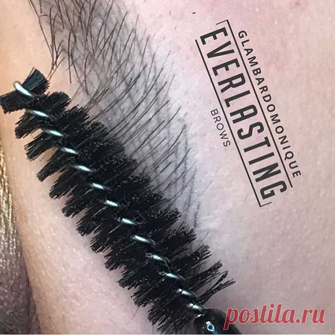 Everlasting Brows Academy в Instagram: «Just look at these healed brows by @glambardomonique 💗perfect crisp hair strokes! Using only the best pigments from Everlasting Brows!…» 30 отметок «Нравится», 2 комментариев — Everlasting Brows Academy (@everlastingbrowsme) в Instagram: «Just look at these healed brows by @glambardomonique 💗perfect crisp hair strokes! Using only the…»