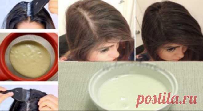 Ваши волосы будут расти действительно быстро: только 3 ингредиента и ваша чудодейственная маска для волос готова! » MAKATAKA
