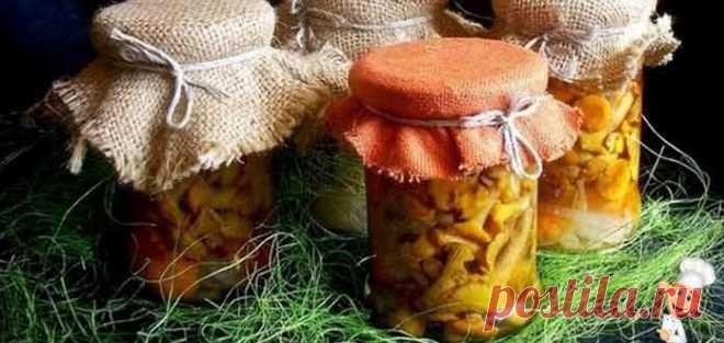 Грибы лисички как готовить на зиму маринованные - Вкусно готовим дома