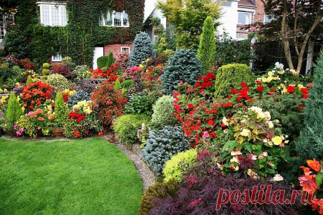 Огород, сад, балкон