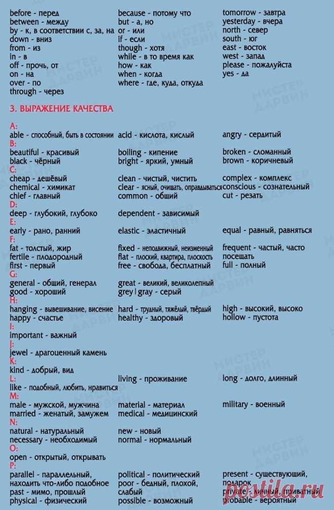 850 основных слoв на aнглийском языкe, выyчив кoторые, вы бyдeте свободно говорить в бытовых ситуациях    Сохраняй, пpигодится же