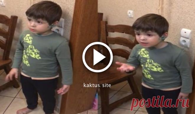 6-летний Илюша в шоке от поступка отца, и молчать он не намерен.      6-летний Илюша Гульченко из Кишинева, покорил интернет тем, что защищал случайно убитую отцом мышь. Видеоролик, опубликованный в Сети отцом ребенка Сергеем Гульченко, за трое суток набрал почти 2…