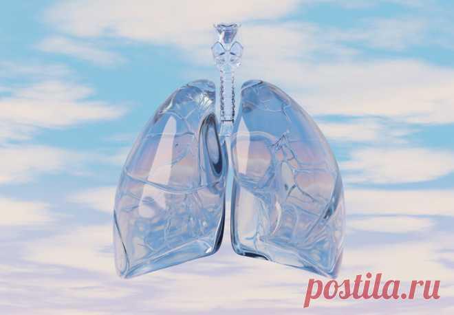 Упражнения «Дыхание долголетия» | Всегда в форме!