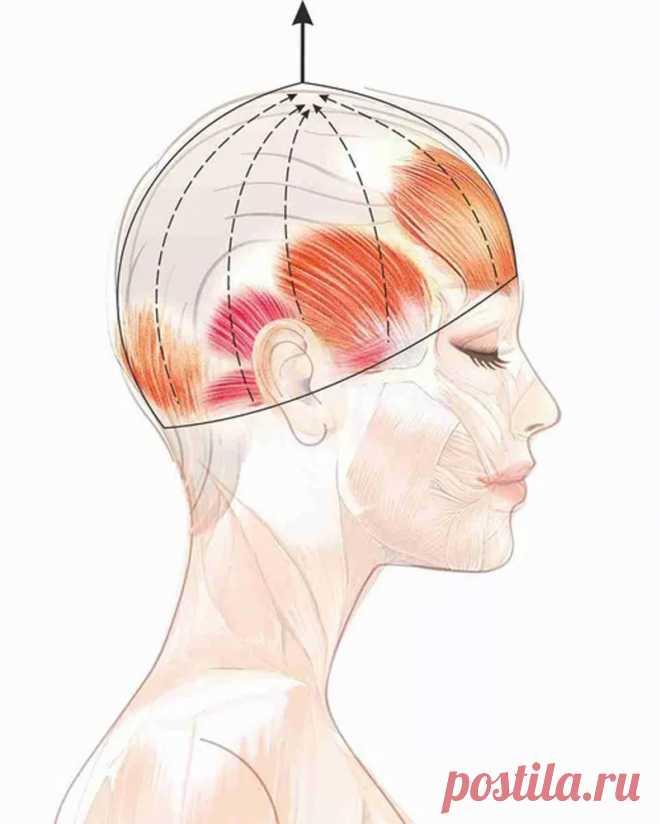 Упражнение «Шлем»: эффективная подтяжка лица без скальпеля!