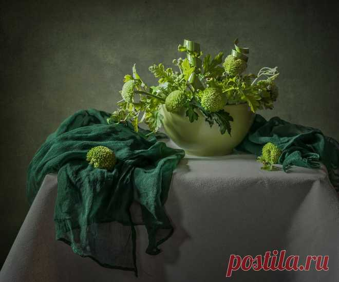 Фотография О зеленом... из раздела натюрморт №5275867 - фото.сайт - Photosight.ru