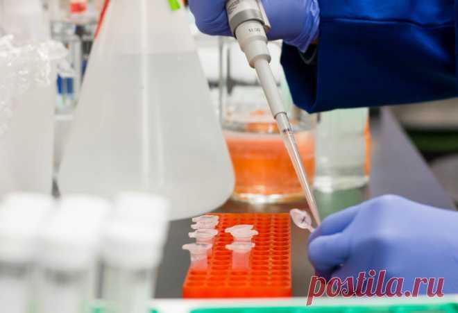 Названо самое необычайное свойство Covid-19 Стало известно, что в коронавирусной инфекции объединились особенности, которые ранее встречались у целого ряда других вирусов. Об ...