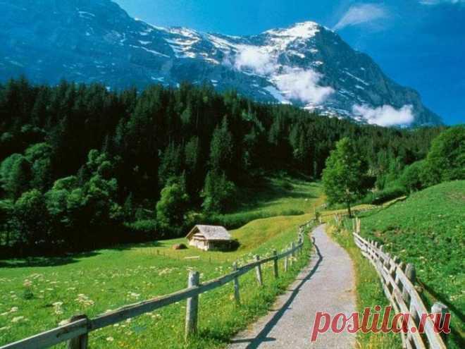 природа картинки красивые - 237 тыс. картинок. Поиск@Mail.Ru