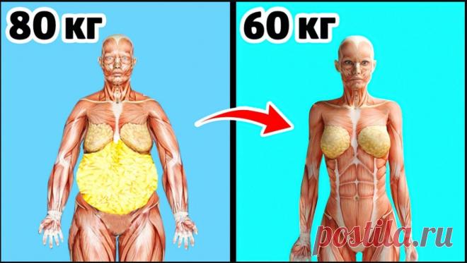 Вешу 80 кг как похудеть?
