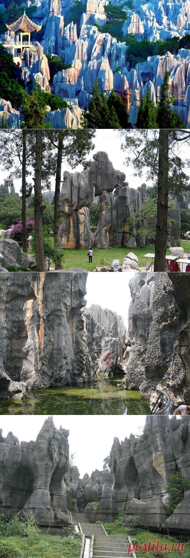 Шилинь, Китай.В провинции Юньнань на территории площадью 350 км2 раскинулся «каменный лес» Шилинь. Древние скалы, пещеры, водопады и озера создают атмосферу сказочного мира. По легенде, один юноша решил спасти народ от засухи и построить плотину. Волшебник дал ему хлыст и жезл, чтобы рассекать и перемещать каменные глыбы. Самые малоизвестные чудеса природы.Но инструменты имели магическую силу лишь до рассвета. Юноша не закончил работу, и огромные монолиты так и остались ра...