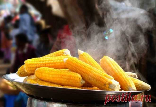 Отведай вкуснейшую кукурузу, добавив в кастрюлю 2 секретных ингредиента! Обожаювареную кукурузу! Всегда считал, что готовить ее следует в подсоленной воде и подольше, чтобы зерна стали мягкими… Как оказалось, я был очень далек от истины!   Чтобы лакомиться сочной, нежной, сладкой и необычайно полезной кукурузой, достаточно при готовке добавить в кастрюлю 2 простых ин