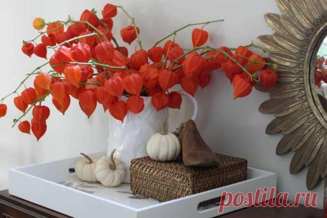 Фото-советы по оформлению осеннего интерьера | Lavanda-decor | Яндекс Дзен