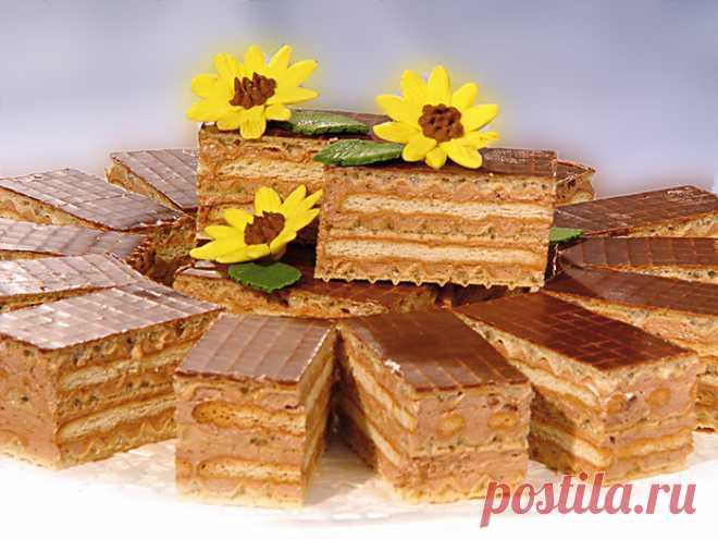 Торт из печенья и вафель без выпечки - Четыре вкуса - медиаплатформа МирТесен