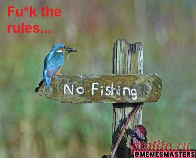 No Fishing | Gag Bee  #funny #memes #comics #humor #hilarious #fish #fishing #girls #boys #gagbee