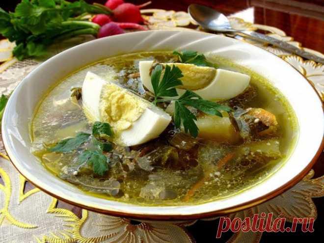 Украинский суп из щаевля (Зелёный борщ)