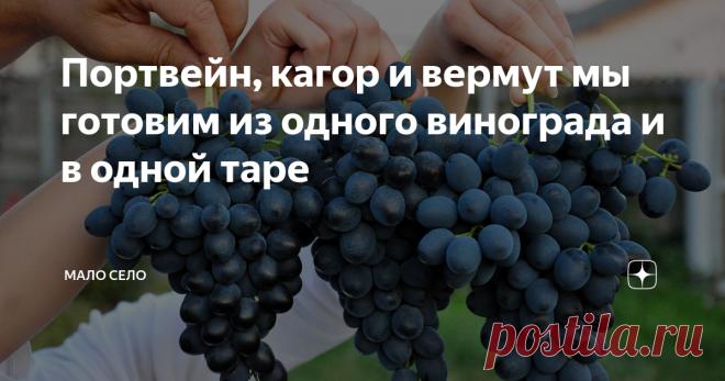 Портвейн, кагор и вермут мы готовим из одного винограда и в одной таре Первый жом винограда это портвейн. Второй - кагор. И третий, соответственно, вермут. Готовим разные марки вина мы у себя дома из винограда