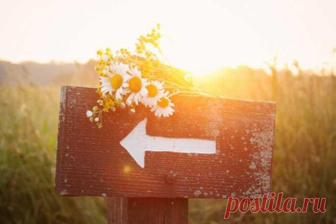 Что делать, чтобы чувствовать ветер перемен - мудрый совет людям, рождённым с 20 января по 18 февраля | Нумерология с душой | Яндекс Дзен