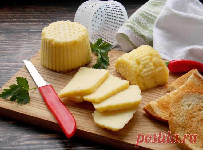 Домашний сыр из творога и молока рецепт с фото пошагово - 1000.menu