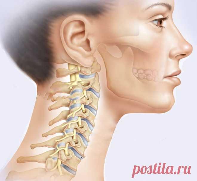 Effective exercises for cervical vertebras