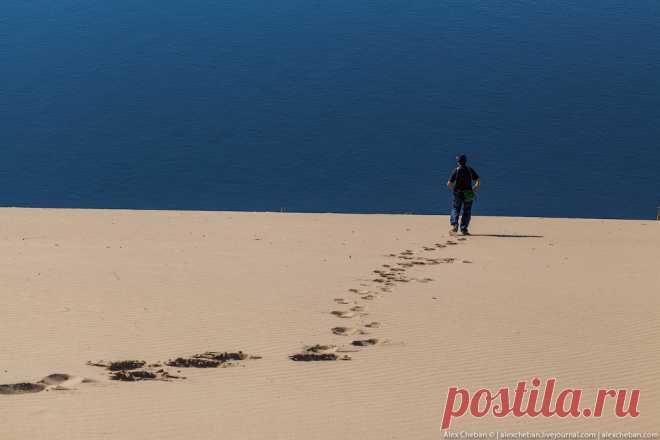 Песчаные барханы посреди суровых якутских снегов... Необычная Якутия. — Живой Журнал