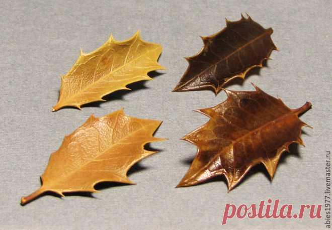 Глицериновые листья