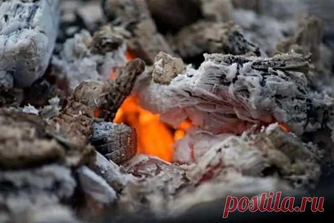 Способы использования древесной золы, о которых мало кто знает На протяжении веков зола считалась ценностью, и не зря. Сжигая дрова в камине или печи, вы можете с огромной пользой использовать древесную золу в самых разнообразных случаях. Есть даже и такие, о кот...