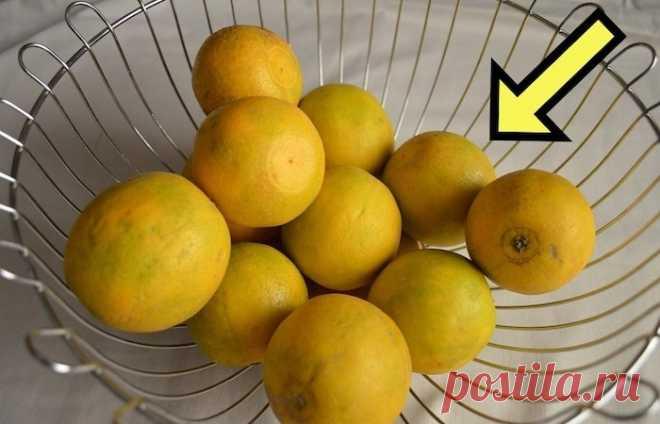 Лимон: секреты выбора «Весна» и «авитаминоз» – это почти слова-синонимы. И пускай дачные урожаи уже не за горами, до них ещё нужно продержаться. А пока старательно будить организм витаминами после зимней спячки. Отправляет…