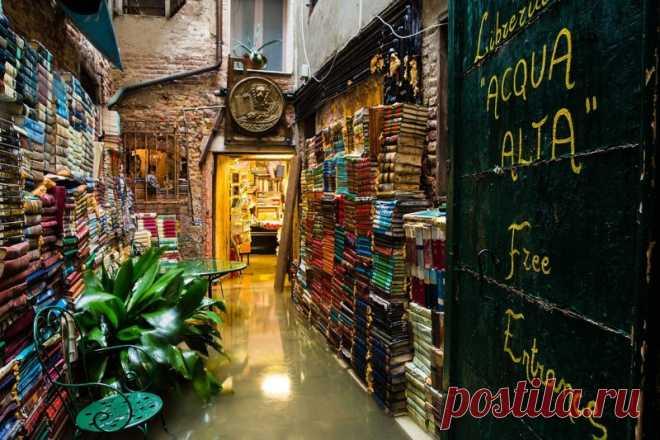 Libreria Acqua Alta или книжная лавка с душой