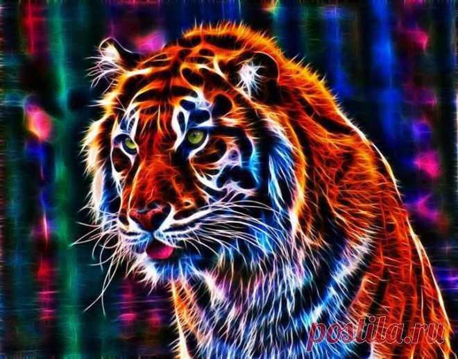 Tiger - fractal  Fotos von David Arts Beitrag in Fractaliusists | Facebook