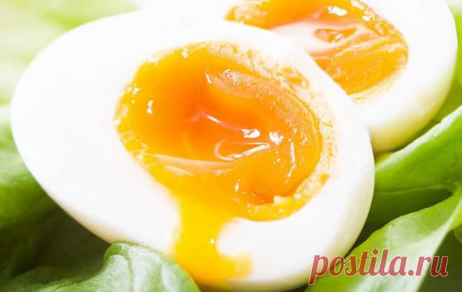 варёное куриное яйцо