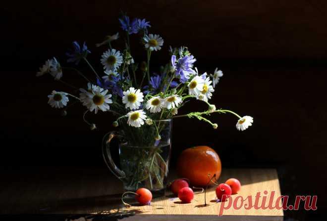 «Натюрморт с полевыми цветами и черешней #конкурс #натюрморт