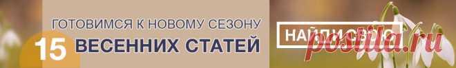 Огород.ru - Полезные советы о загородной жизни