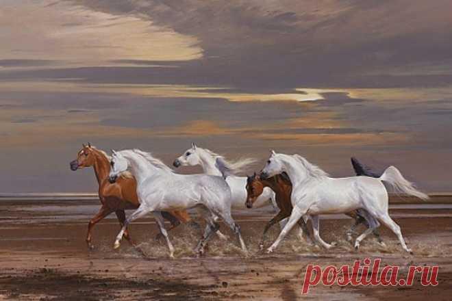 Лошади. Британский художник Петер Смит .