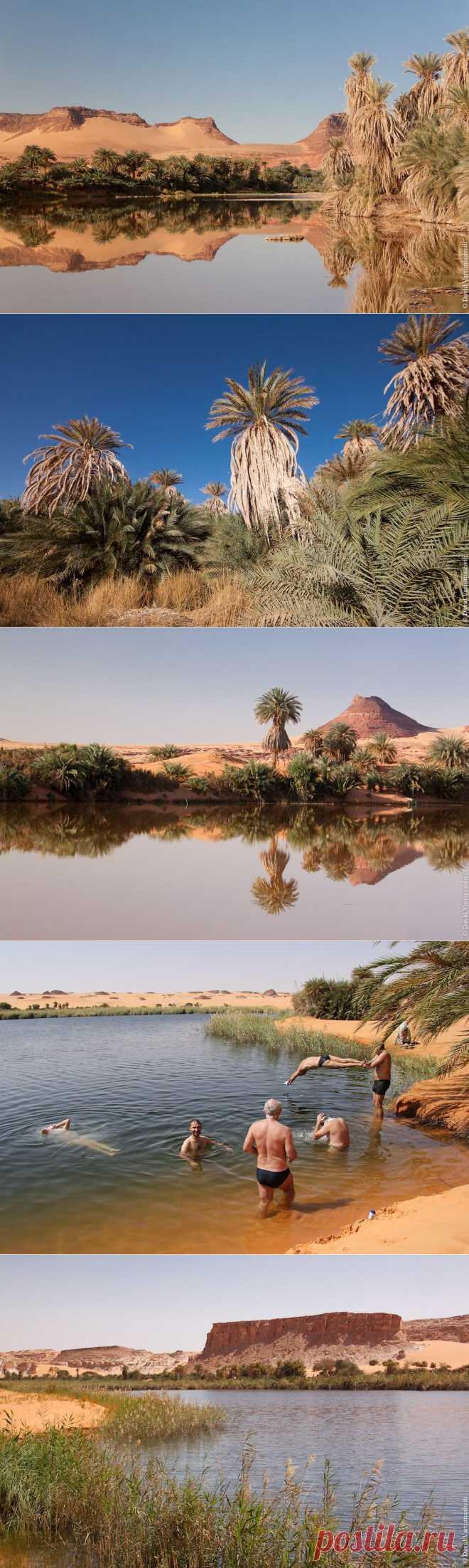 Чад. Озёра Унианга | МУЗА НАШЕГО ДВОРА