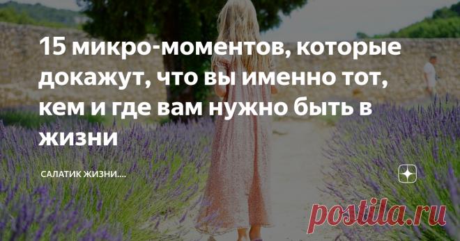 15 микро-моментов, которые докажут, что вы именно тот, кем и где вам нужно быть в жизни   Салатик жизни....   Яндекс Дзен