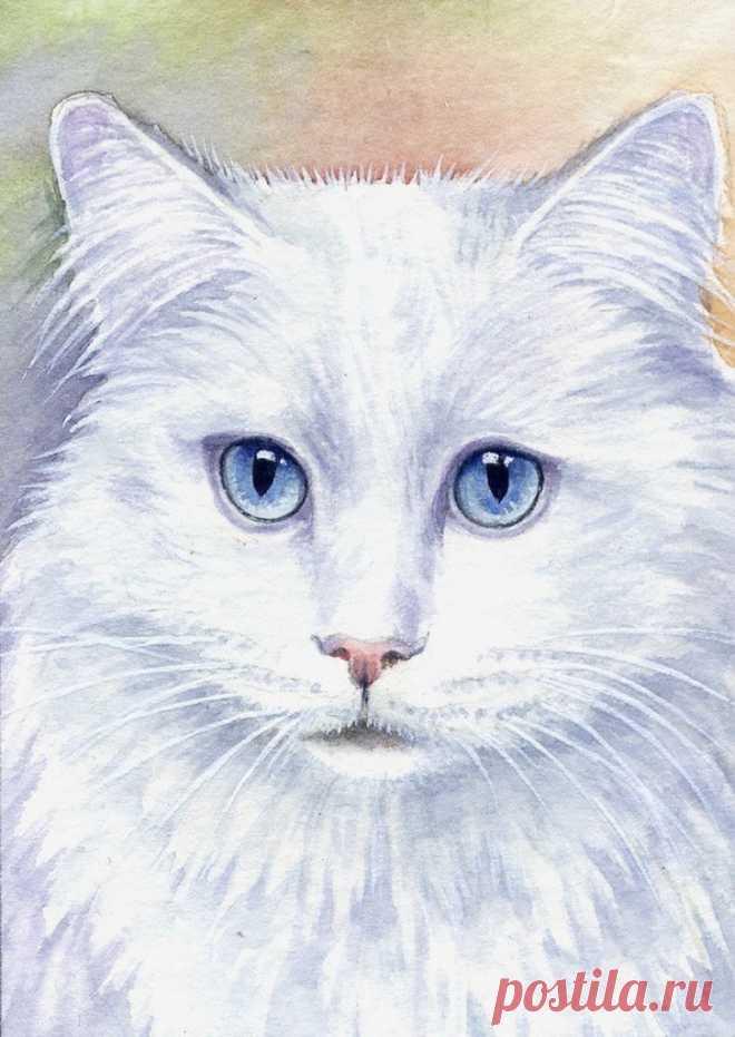 кошки акварелью картинки американская художница всегда быть
