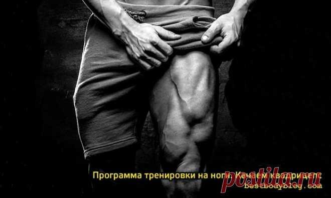 Программа тренировки ног. Или как накачать квадрицепс? | bestbodyblog.com