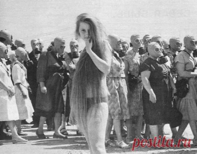 De 30 fotografías asombrosas históricas, que no veíais (30 fotos) | el Diablo toma Como esto era: ¡miren, y no podéis contener la emoción! Las personas conocidas y las estampas ya los tiempos que se han ido, digno de la atención, en una nueva elección de los fotocuadros únicos del archivo. 1. La alarma de estudios, 1962, la región de Omsk 2. El monigote de nieve, 1902, la Alaska 3. Los pilotos militares. La URSS. 1970 4. Las consecuencias de la nevada más fuerte en el Sajalín. 1960 5. El autobús escolar, 1930 años, los EEUU 6....