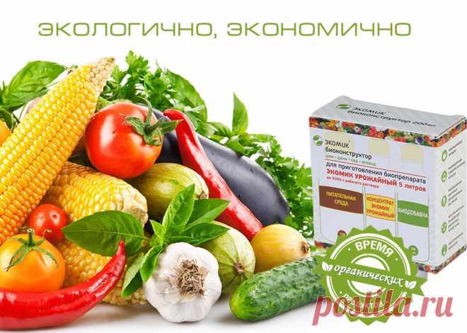 Микробиологический препарат «ЭКОМИК Биоконструктор»