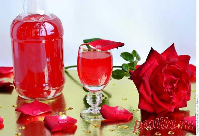 Ликёр из лепестков роз - Женский Журнал Друзья мои,вишневым ликеромя с вами поделилась, теперь хочу предложить более экзотический рецепт ликера — из лепестков роз. Розы для этого подойдут только темно-красные, желательно с выраженным ароматом. И главное! Розы брать только из своего сада и те, на которые не оказывалось никакое химическое воздействие. Розы из соседнего цветочного магазина или подарочного букета категорически не годятся. …