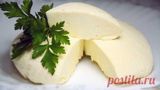 Домашний сыр Альметте
