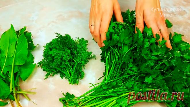 Зелень зимой больше не покупаю: показываю способ, как сохранить любую зелень свежей на зиму (проверен мной годами)   Кулинарный Микс   Яндекс Дзен