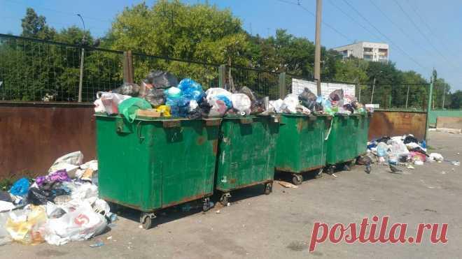 Новые правила вывоза мусора: еще одно основание законно не платить Спешно принятая