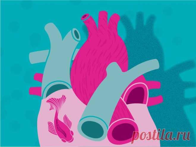 Как сохранить здоровье сердца / Будьте здоровы
