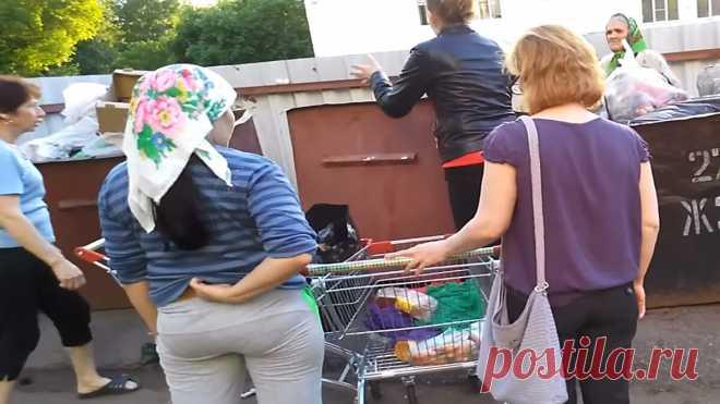 Просрочка из супермаркета пользуется спросом не только в магазине | Блог обычного Россиянина  | Яндекс Дзен
