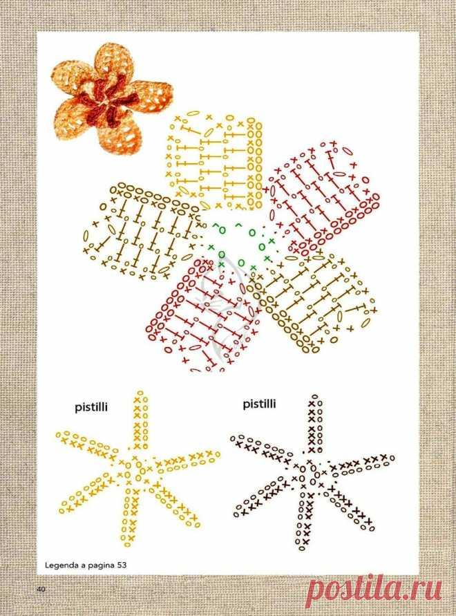Схемы цветов, связанных крючком, продолжение. | Елена Новожилова | Яндекс Дзен