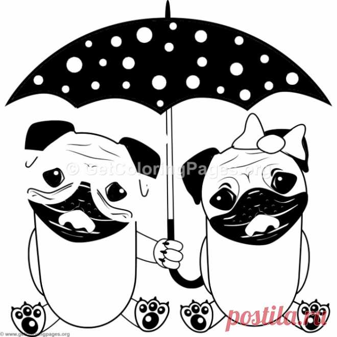 Cartoon Animal Romantic Couple in Love Cute Dogs with ...