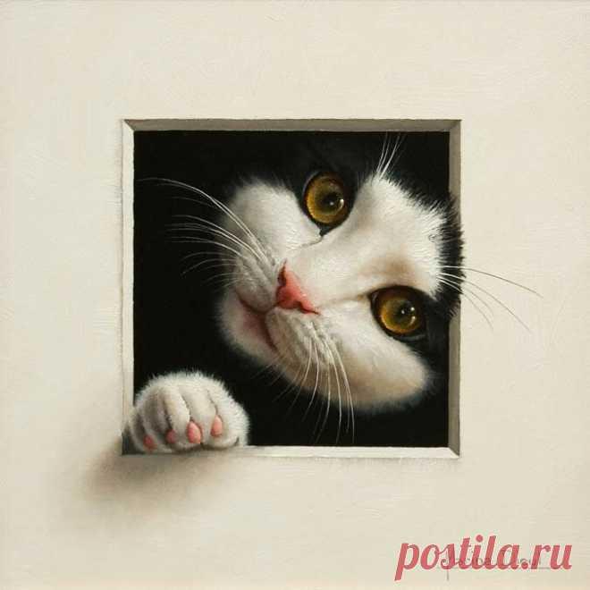 Портреты забавных животных Марины Диул | Мир эстета | Яндекс Дзен